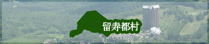 「留寿都村」