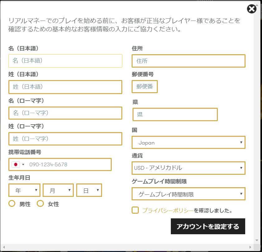 インターカジノの登録方法、手順(個人情報入力)