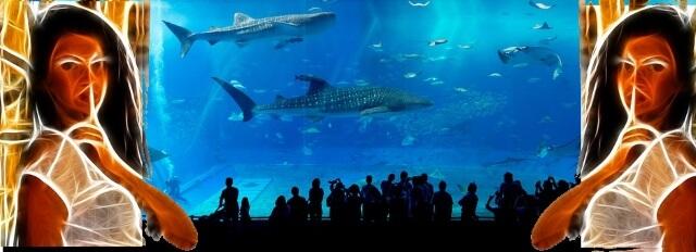 「水族館ではお静かに」