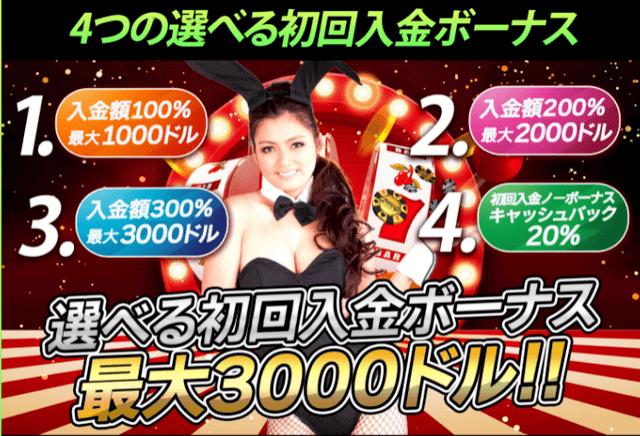 オンラインカジノのボーナス