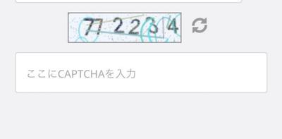 画面上に表示される6桁の数字キャプチャを撮影